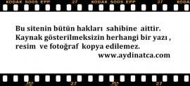 Yan Resim